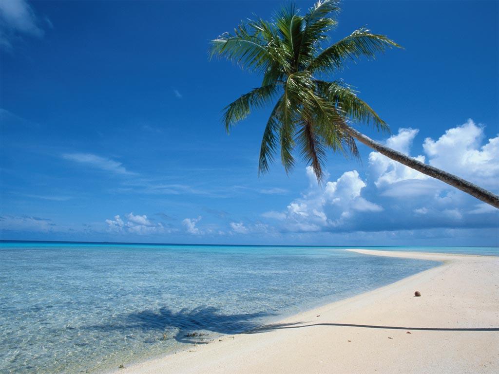 Stranden Curacao Bezoek De Witte Stranden Van Curacao