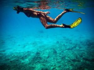 Snorkelen Curacao