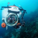 http://www.prachtigcuracao.nl/wp-content/uploads/2014/07/Curacao-Sea-Aquarium-21831.jpg