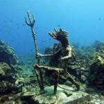 http://www.prachtigcuracao.nl/wp-content/uploads/2014/07/Duiken-op-Curacao-21941.jpg