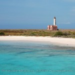https://www.prachtigcuracao.nl/wp-content/uploads/2014/07/Klein-Curacao-22293.jpg